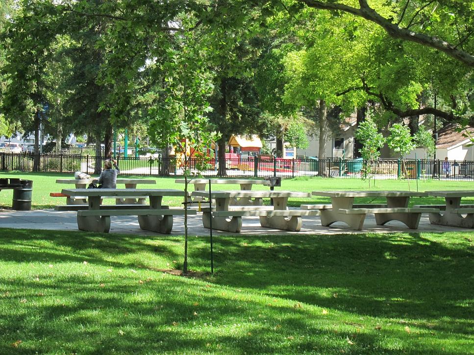 Davis Central Park